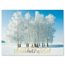 Shop Photo Christmas Cards at Current Catalog