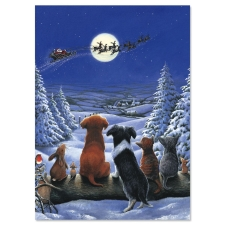 Shop Christmas Cards at Current Catalog